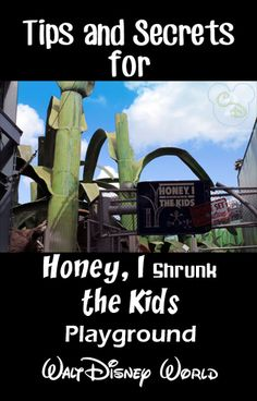 Awesome tips and secrets for Honey I Shrunk The Kids Playground at Walt Disney World. Pin this if you are going to WDW! Disney World Parks, Walt Disney World Vacations, Disneyland Trip, Family Vacations, Disney World Hollywood Studios, Authorized Disney Vacation Planner, Disney Fun Facts, Disney Tickets, Disney Time