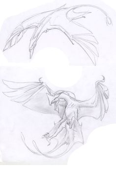 So i went to see Avatar last week with my brother, a friend and my friends friend. and because of that i made this quick sketch of the ikran and toru. Monster Concept Art, Alien Concept Art, Creature Concept Art, Monster Art, Creature Design, Mythical Creatures Art, Alien Creatures, Magical Creatures, Fantasy Creatures
