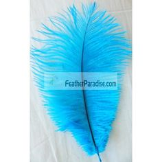 Turquoise/Malibu blue Ostrich Feathers Wholesale 12-14inch 12 Pieces For Wedding Centerpieces and Crafts by dozen or bulk