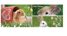 Happy Easter! Feliz Páscoa, amigos!