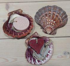 Jacobschelp Sea Shells, Bathroom, Desserts, Food, Art, Washroom, Deserts, Clams, Bath Room