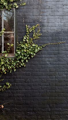 Black paint in a matte finish gives an exterior brick wall a modern update. A creeping vine adds extra character to the irregular wall surface. Mimic the look at home with our pro advice on painting brick.