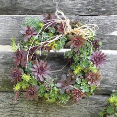 This totally different a cactus wreath!!