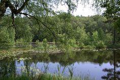 Nationalpark Müritz