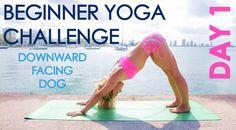 Bem-vindo ao Desafio de Yoga para Iniciantes. Todos os dias serão postados vídeos de Yoga para Instrutora de Yoga Kino, que propõe este desafio de 1 mês .... conseguir fazer Yoga diariamente e usufruir de todos os benefícios físicos, mentais e psíquicos do Yoga.