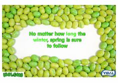No matter how #long the #winter, #spring is sure to follow! #InternationalDayOfHappiness spring is here! #sweet pic.twitter.com/cbP1yrZvTD