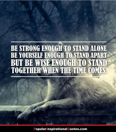 Be strong enough to stand alone, be yourself enough to stand apart, but be wise enough to stand together when the time comes