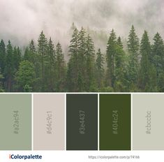 Color Palette Ideas from Ecosystem Spruce Fir Forest Vegetation Image Green Colour Palette, Color Palate, Adobe Color Palette, Nature Color Palette, Forest Green Color, Tropical Colors, Color Swatches, Color Theory, Colour Schemes