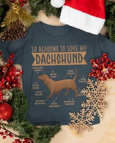 10 Reasons To Love Dachshund Best Dog - Charcoal Grey puppy breeds, cute dachshunds, dachshund baby clothes #doxie #puppies #puppyoftheday, dried orange slices, yule decorations, scandinavian christmas Dapple Dachshund Puppy, Dachshund Funny, Black Dachshund, Dachshund Puppies For Sale, Dachshund Quotes, Dachshund Gifts, Funny Dachshund Pictures, Puppy Pictures, Hot Dogs