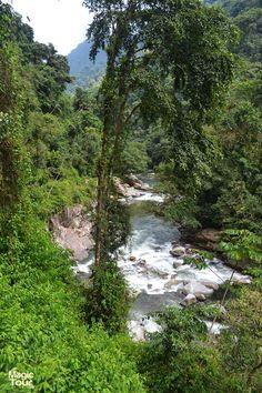 Rio Buritaca, Sierra Nevada de Santa Marta #Lostcitytrek #Nature #Travellers #Adventures #Welovetravel #Cultures
