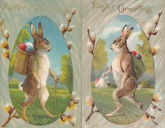 Nice~Lot of 2 Standing Rabbits with Colored Easter Eggs Vintage Postcards-ttt788 #Easter