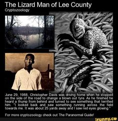 The Lizard Man of Lee County Cryptozoology June Christopher Davis was driving home when he stopped on the side of the road to change a blown out tyre. As he finished he heard a thump from behind and turned to see something that terrified him. Mythological Creatures, Fantasy Creatures, Mythical Creatures, Strange Creatures, Unexplained Phenomena, Unexplained Mysteries, Spooky Stories, Horror Stories, Ghost Stories