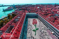 Piazza San Marco in Venezia, Veneto