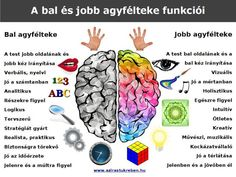 Mit tud a bal és mit tud a jobb agyfélteke? Gross Motor Activities, Movement Activities, Team Building Activities, Gross Motor Skills, Physical Education Games, Character Education, Health Education, Physical Activities, Left Brain Right Brain