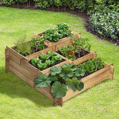 Green Garden, Autumn Garden, Container Gardening Vegetables, Vegetable Garden, Potager Palettes, Gemüseanbau In Kübeln, Front Yard Design, Plantation, Small Gardens