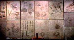 46. 09-03-2012. Leonardo da Vinci, el genio.