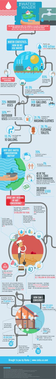 The Water Wager #Infographic #Environment #Water