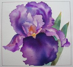 Nel's Everyday Painting: Two Blocked Watercolor Irises
