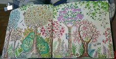 Floresta encantada pica-pau / floresta encantada /  jardim secreto  #johannabasford