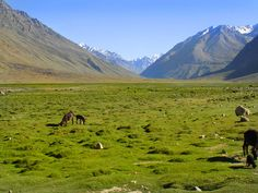Shandur Top, the roof of the world  is one of the entrance to the splendid valley of Chitral in Khyber Pakhtunkhwa province of Pakistan.