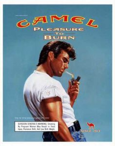 Camel – Victor Gadino