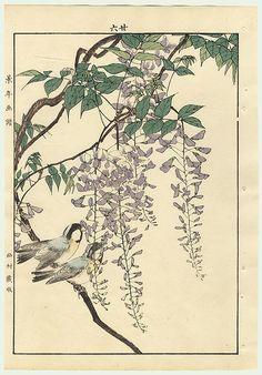 singing birdies