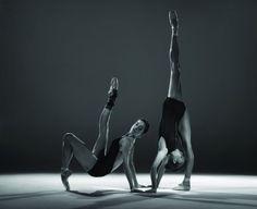Bodytorque :: Photo by Tim Richardson
