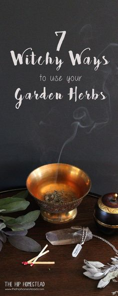 7 Witchy Ways to use your Garden Herbs- The Hip Homestead