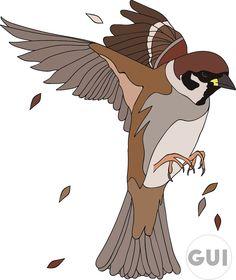 Sparrow before logo illustrator