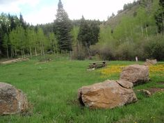 Picture of Ophir Campground
