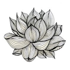 lotus-flower-black-and-white-nature-organic-design-drawing-abstract-unique-lines-pattern-prints.jpg (Изображение JPEG, 700 × 699 пикселов) - Масштабированное (95%)