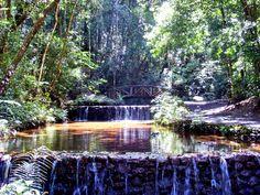 Parque das Mangabeiras BH