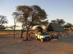 Kgalagadi Transfrontier Park, Botswana: Wilderness Camping Nature Reserve, Paladin, Conservation, Wilderness, Happy Holidays, South Africa, Trip Advisor, Gazebo, Safari