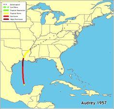 165 Best Hurricanes images