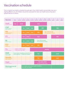 38 Useful Immunization & Vaccination Schedules [PDF] ᐅ TemplateLab Baby Shot Schedule, Kids Schedule, Nursing School Notes, Baby Shots, Pharmacology Nursing, Pediatric Nursing, Buxus, Reading, Cards