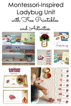 Free ladybug printables and Montessori-inspired ladybug activities for multiple ages; perfect for home or classroom; great for a summer unit - Living Montessori Now Montessori Education, Montessori Toddler, Montessori Activities, Montessori Bedroom, Baby Education, Special Education, Teaching Kids, Kids Learning, Learning Games