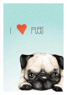 I love Pugs (poster) by Clara McAllister, via Behance