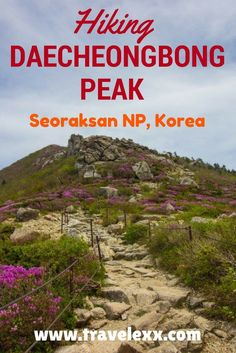 A Seoraksan National Park hike was one of the few things that I definitely wanted to do on my visit to Korea. Daecheongbong Peak is the highest in Korea Travel Guides, Travel Tips, Travel Articles, Travel Advice, Seoraksan National Park, South Korea Travel, Travel Activities, China Travel, Travel Around The World
