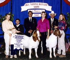 Powell-Holman Reserve Grand Champion Boer Goat pair. Show goats for sale.
