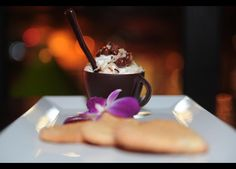RUM & COCONUT MOUSSE IN CHOCOLATE CUP | lemon-lime sugar cookie