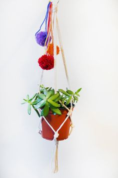 Pompoms, plants and macrame: three of my favorite things.
