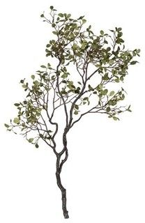 Manzanita Branch with Leaves - modern - accessories and decor - by Crate&Barrel