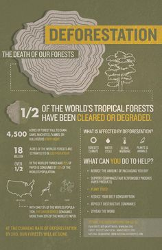 Earth Day 2014: Deforestation Facts #infographics #layout #earthday