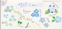 https://flic.kr/p/sMJjq6   2015_05_13_blue_01_s   blue flowers   © Belta(WAKABAYASHI Mayumi )