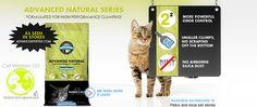 World's Best Cat Litter™ Giveaway Plus Art Giveaway