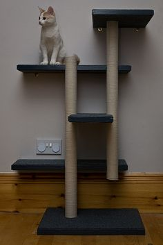 Wall-mount DYI cat tree. The columns are made of cardboard tubes wrapped in sisal rope.