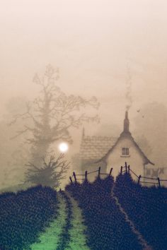 Keepers Cottage - Glyn Matthews