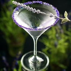 This Lavender Martini recipe (right, from The Food Channel) has a lavender sugar rim which adds a lovely apperance to this delicate garden themed cocktail.