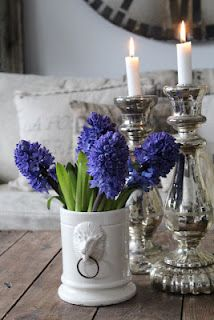 Moms 70th vignette: hyacinth in vase,  with blue and white candle sticks, and lantern or iron crown w ivy in try? and country french print overlay?