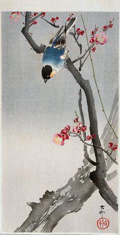 "The Writing Process Blog Tour   Blog post by Eva Vanrell   Image: ""Bullfinch on Flowering Plum"" by Ohara Koson"